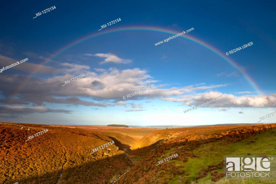 Stock Photo: Moorland and Rainbow, red grouse moor in autumn, Allendale, Northumberland, England.