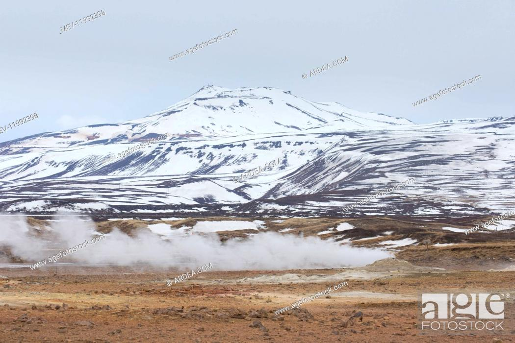 Imagen: Hverir is a geothermal area near Namafjall with boiling mudpools and steaming fumaroles - Iceland.