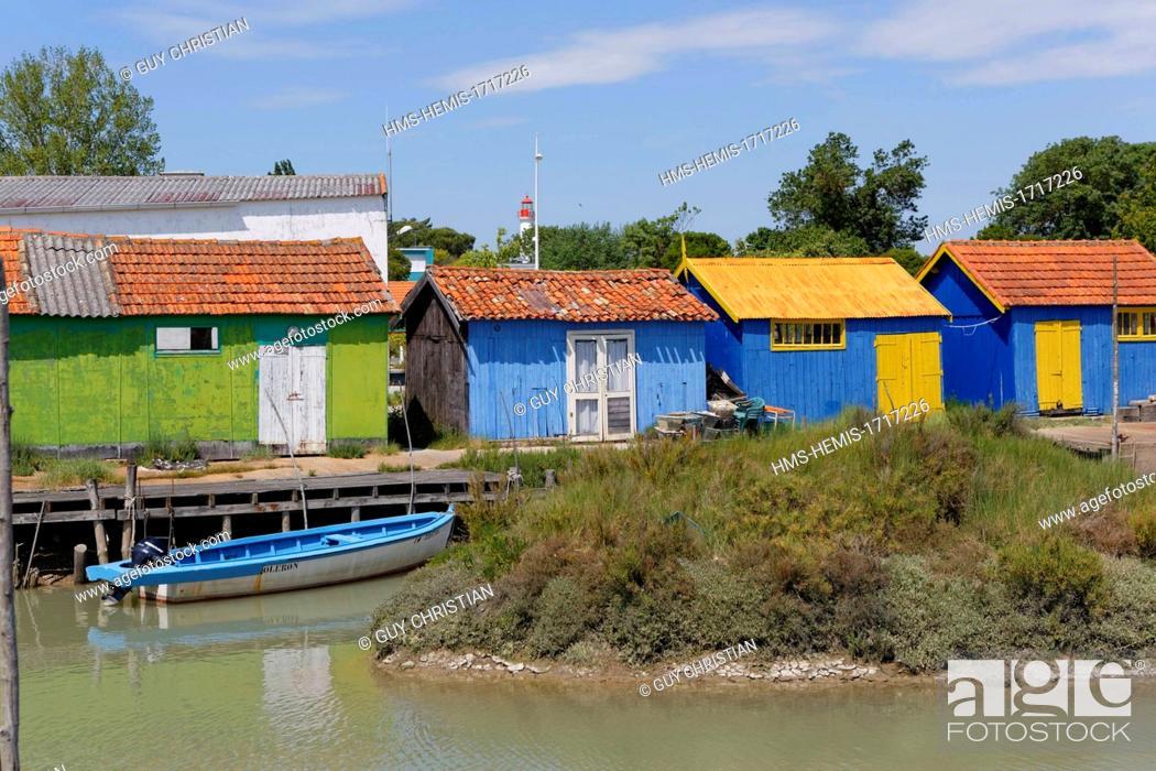 France Charente Maritime Ile D Oleron Oleron Island Chateau D