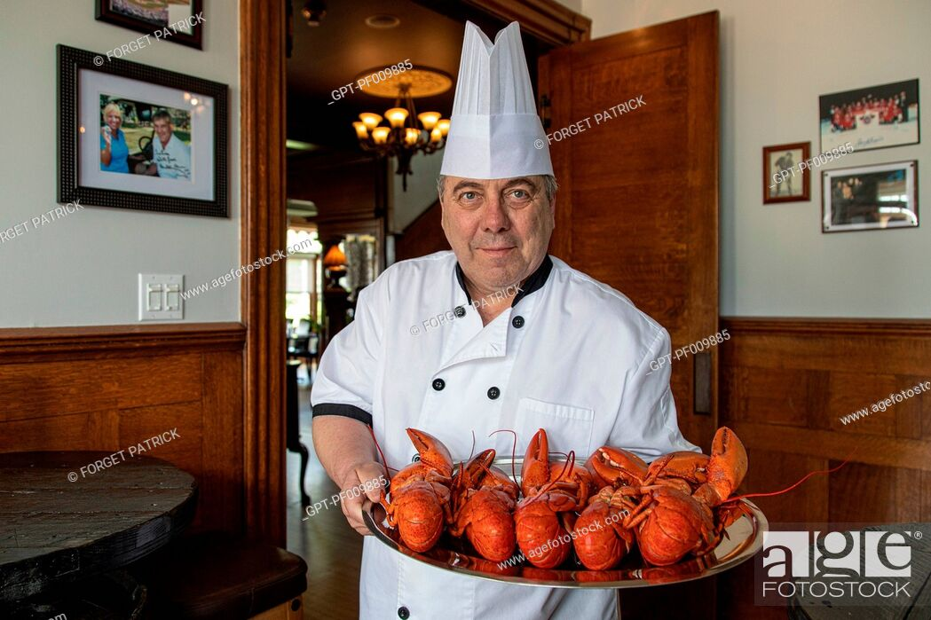 Stock Photo: CHEF GILLES WITH HIS PLATE OF LOBSTERS FOR MAKING GUEDILLES, SHEDIAC, LOBSTER CAPITAL OF THE WORLD, NEW BRUNSWICK, CANADA, NORTH AMERICA.