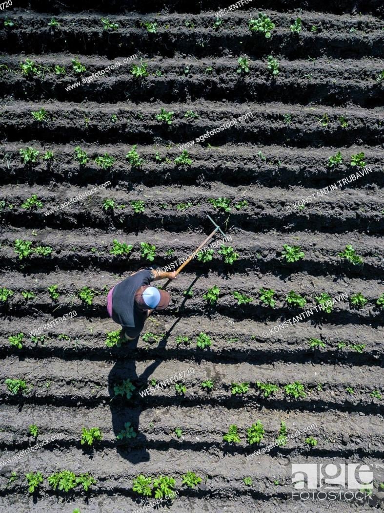 Stock Photo: Aerial view of man working on potato field.