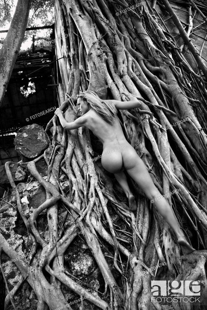Stock Photo: Woman climbing up banyan tree roots.