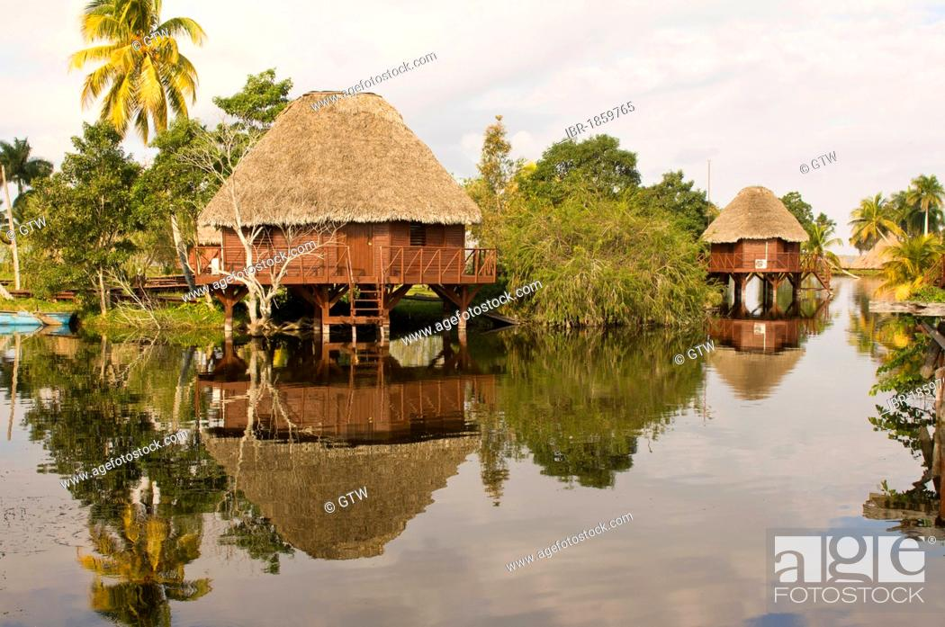 Stock Photo: Laguna del Tesoro, Treasure Lagoon, palm trees and wooden cabins, Zapata Peninsula, Cuba, Central America.