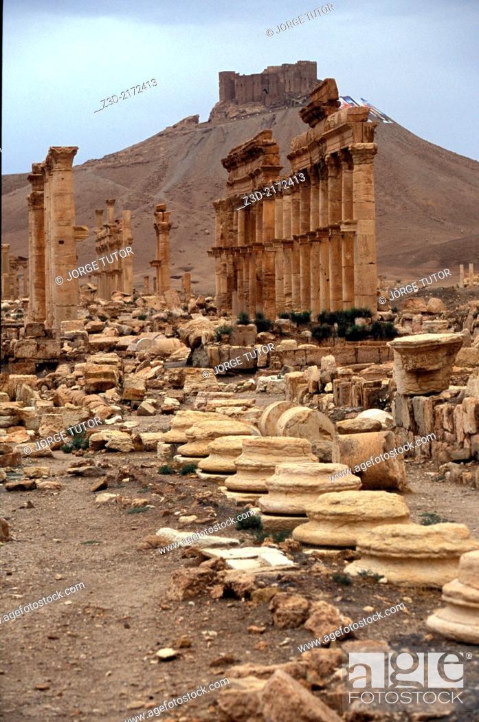 Imagen: Great Colonnade. Palmyra. Syria.