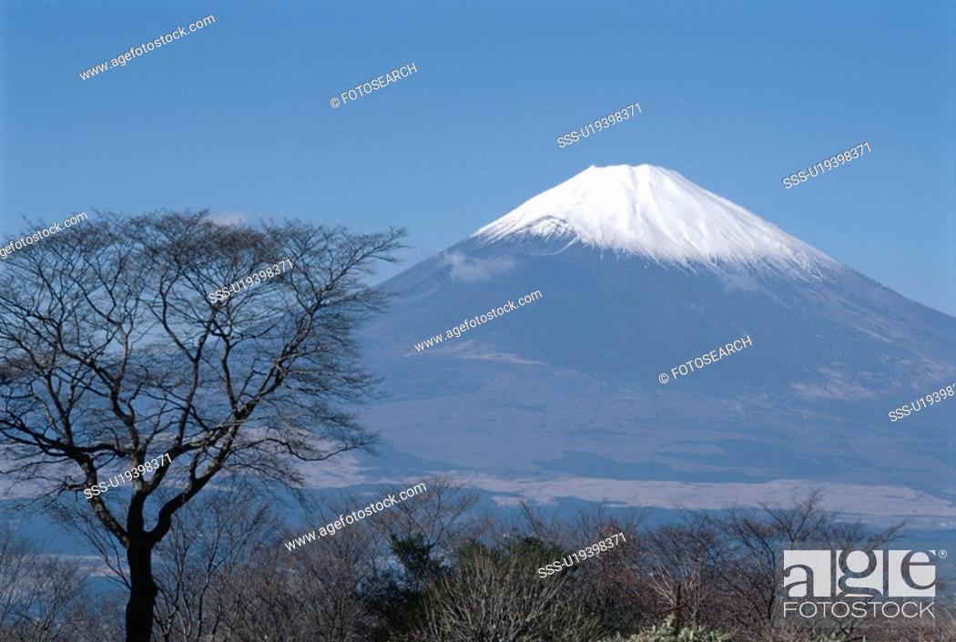 Stock Photo: Mt. Fuji.