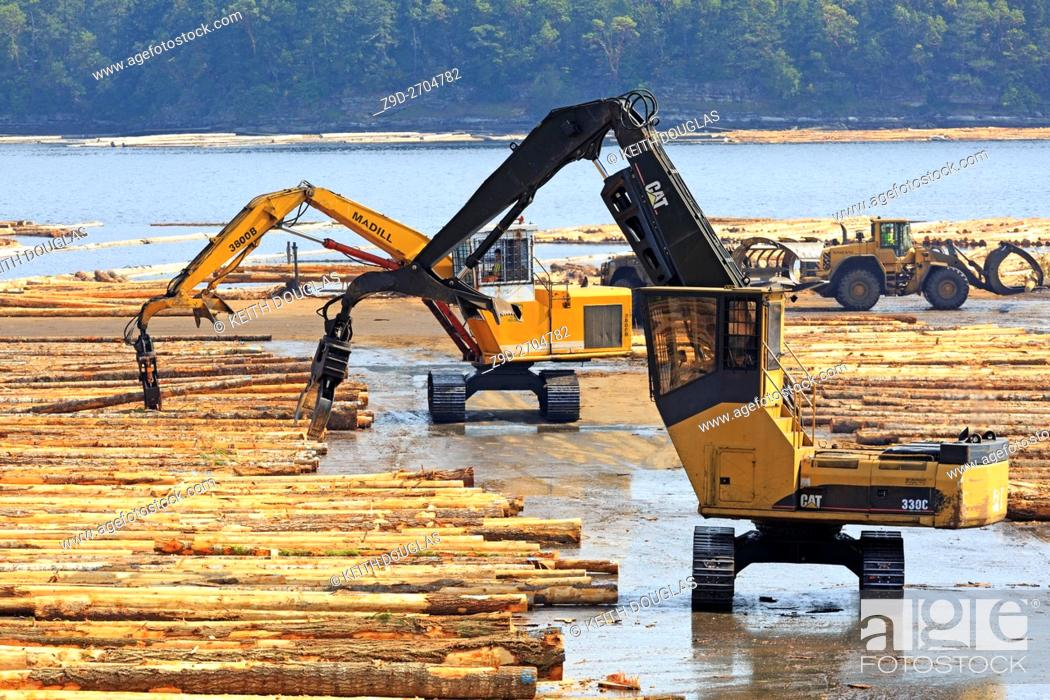 Stock Photo: Equipment sorting logs at sawmill, Ladysmith, Vancouver Island, British Columbia.