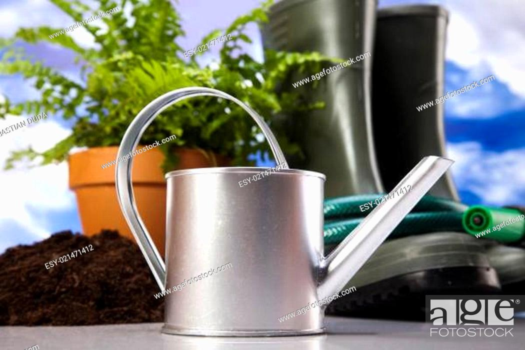 Stock Photo: Watering Can and Garden.