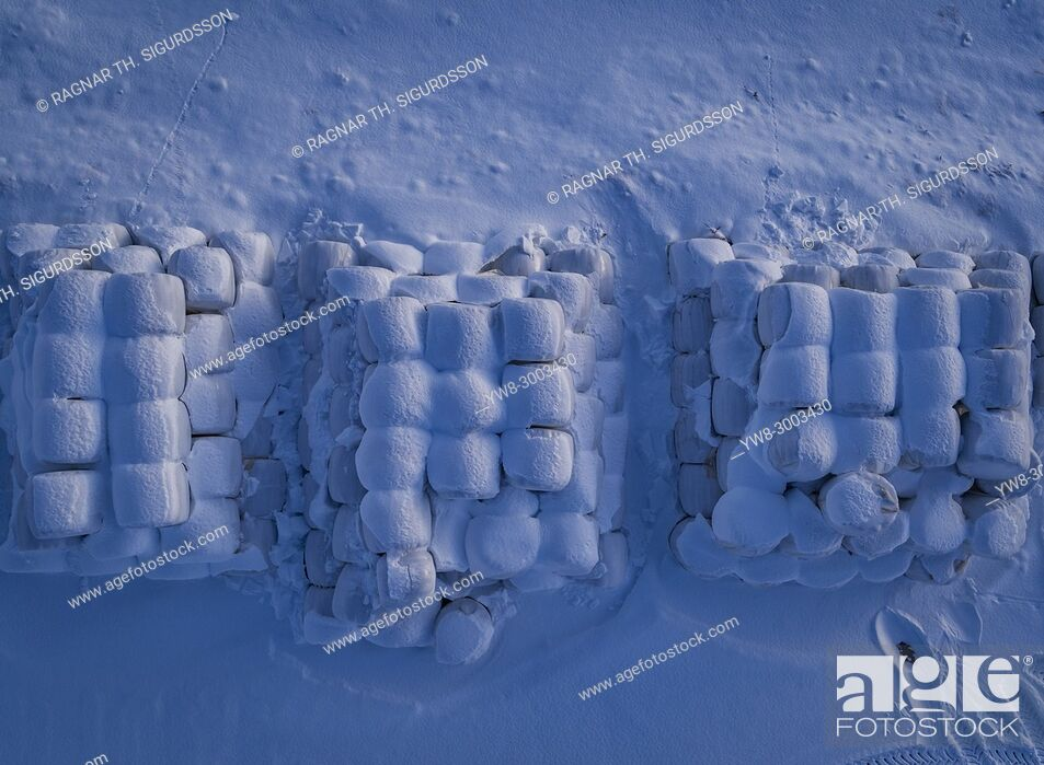 Stock Photo: Snow covered Hay Rolls, Iceland.