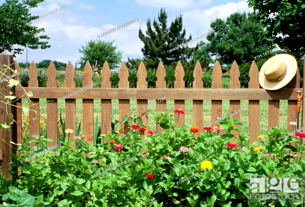 Stock Photo: Bright zinnias and straw hat soften the wooden picket fence that protects the vegetable garden from animals, midwest USA.
