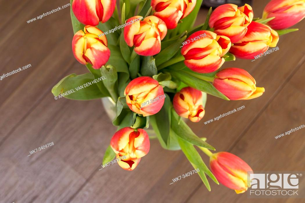 Stock Photo: colorful tulips on wooden vintage background, april season beauty.