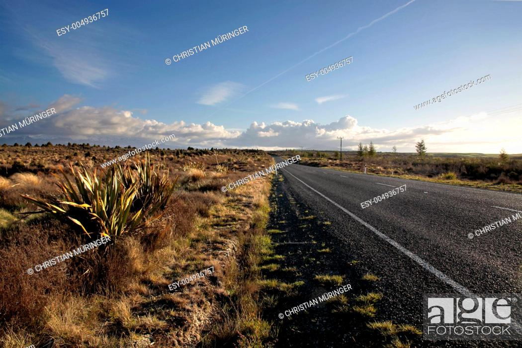 Photo de stock: Strasse im Tongariro Nationalpark.