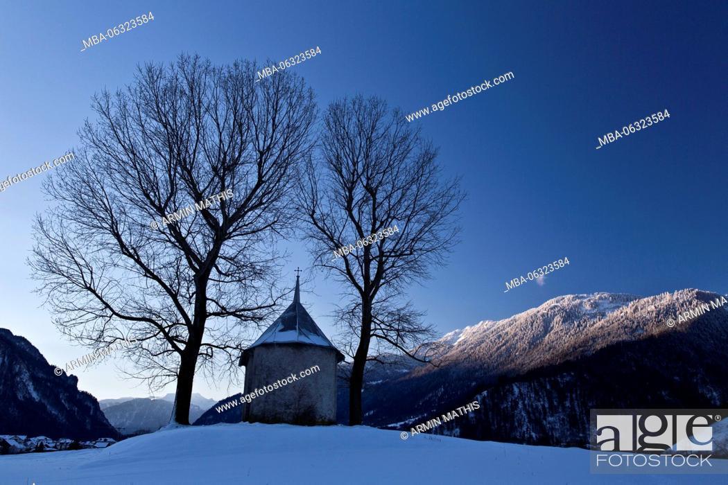 Stock Photo: Winter morning in the Churer Rhine Valley.