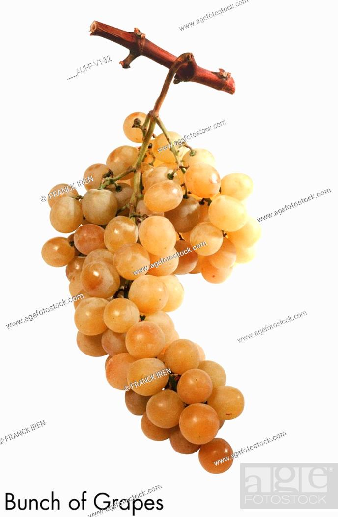 Stock Photo: Bunch of Grapes.