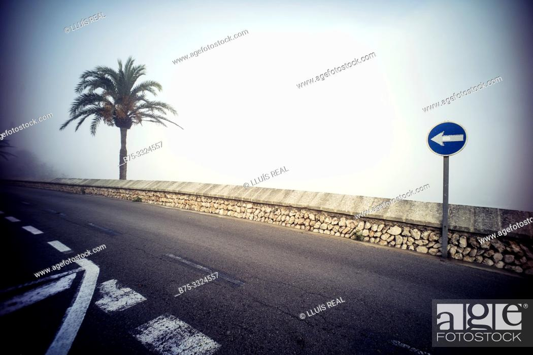 Stock Photo: Street with a palm tree and a unique traffic sign direction Mahon Menorca, Balearic Islands, Spain, Europe.