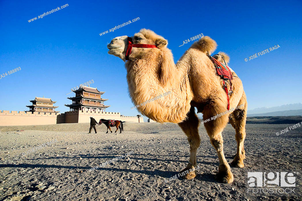 Stock Photo: Jiayuguan City. Jiayu Pass Fort (W.H.). Gobi Desert. Gansu Province. The Silk Road. China. Nov. 2006.