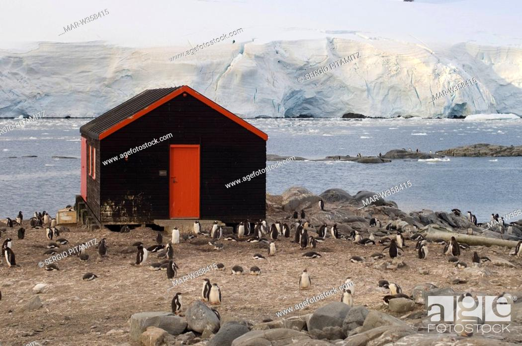 Stock Photo: Antarctica, Antarctic Peninsula, Port Lockroy, British base.