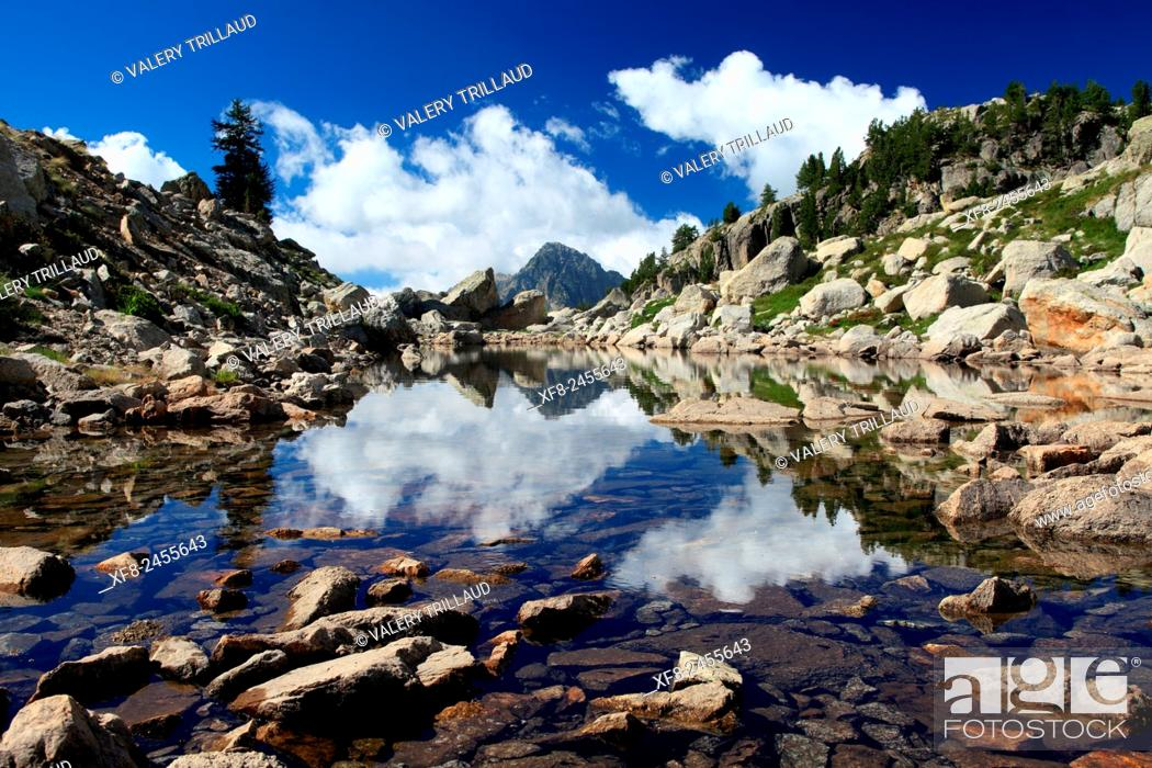 Stock Photo: The lac Negre in the Boreon, Mercantour national park, Alpes-Maritimes, France.