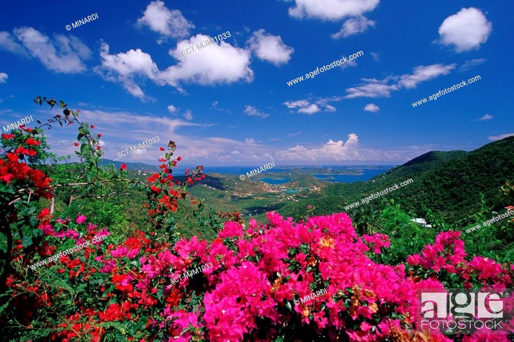 Stock Photo: Beautiful daytime view looking east from the top of St. John, U.S. Virgin Islands.