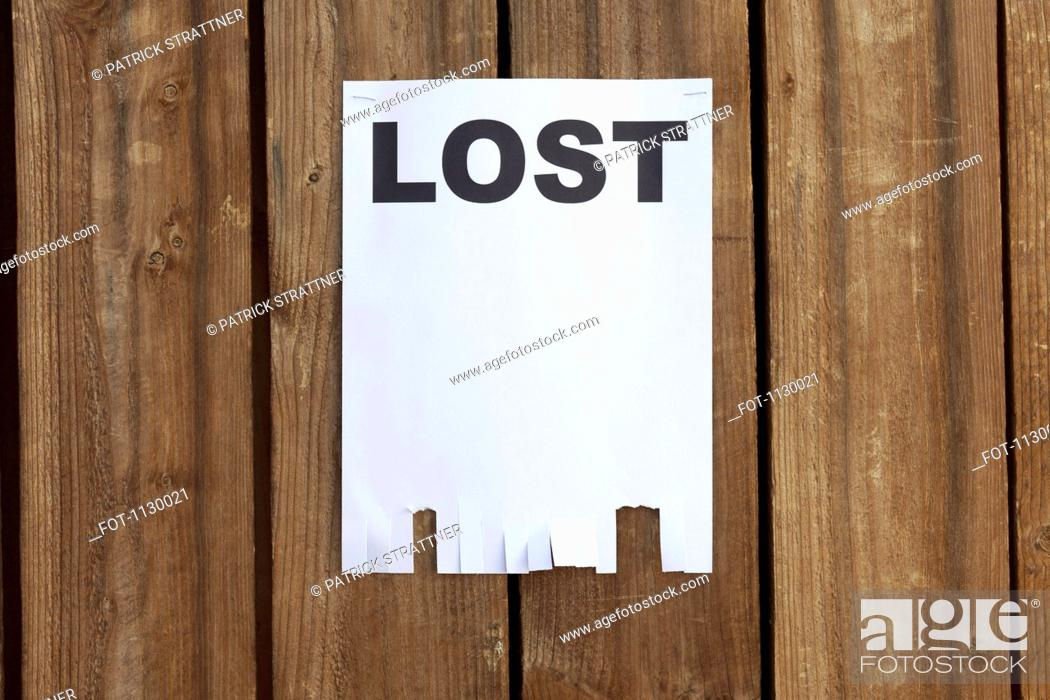 Stock Photo: A flyer posted on a wooden fence with the word LOST on it.