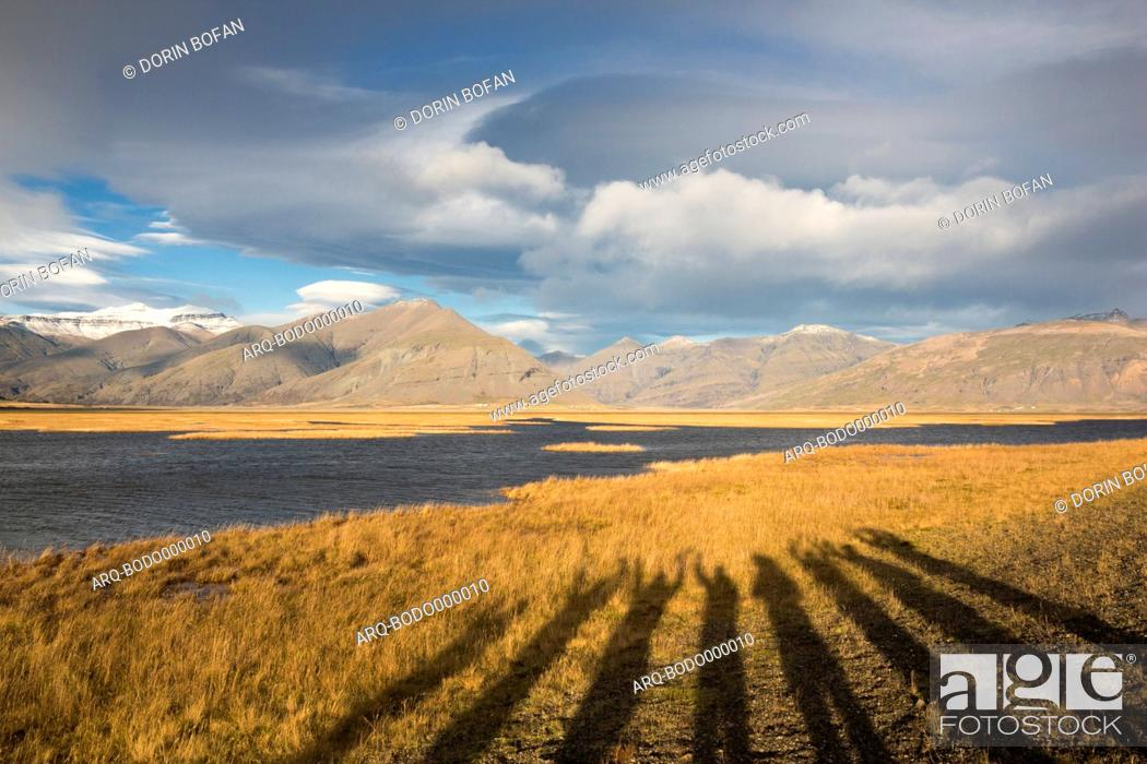 Stock Photo: Long shadows of persons raising their hands projected on yellow grass with mountains and clouds. Photographed in golden light before sunset.