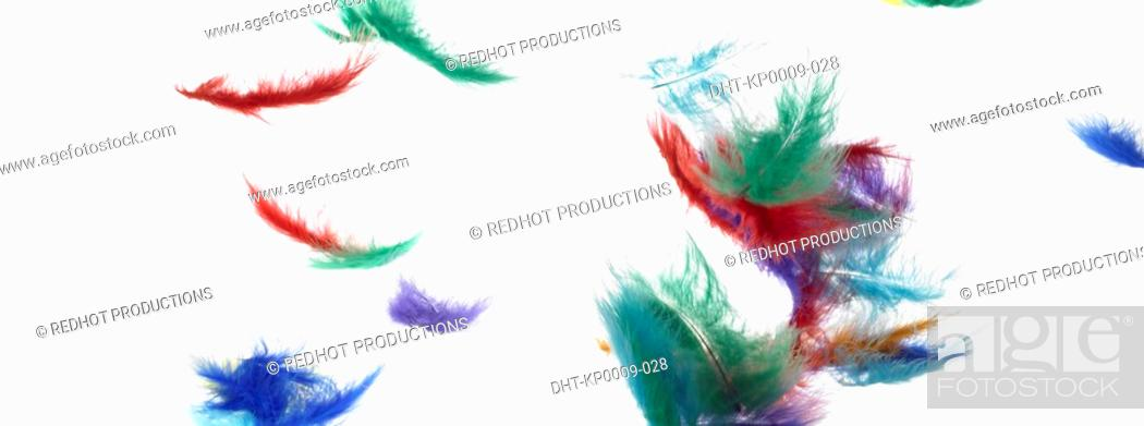 Stock Photo: Colourful Feathers falling.