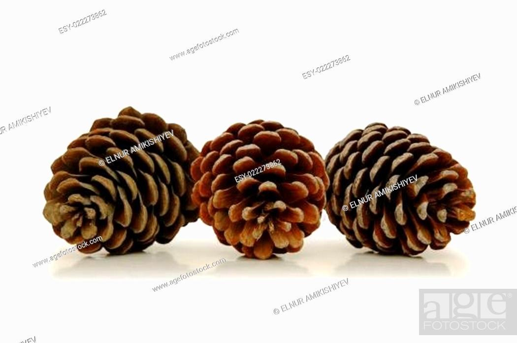 Stock Photo: Three pine cones isolated on white.