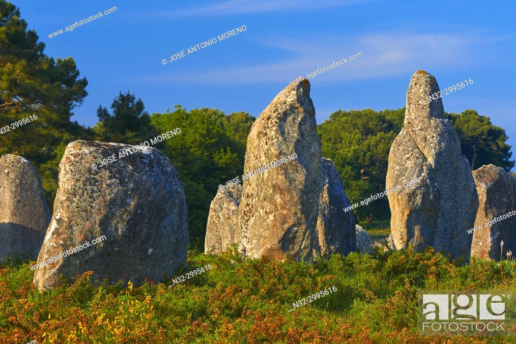 Stock Photo: Carnac, Megalithic stones, Megalitic alignments, Morbihan, Bretagne, Brittany, France, Europe.