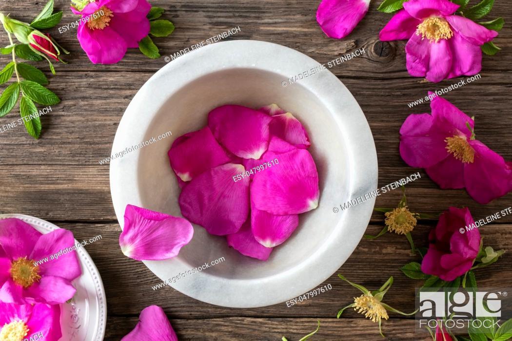 Stock Photo: Fresh Rugosa rose petals in a mortar, top view.