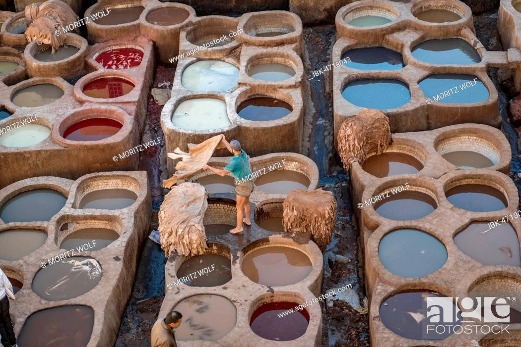 Stock Photo: Worker dyeing leather, basin with paint, dyeing, tannery Tannerie Chouara, tanner and dyer quarter, Fes el Bali, Fez, Morocco.