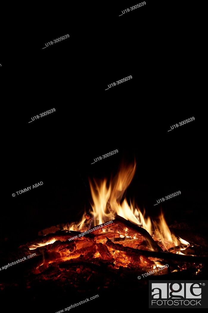 Stock Photo: wood fire.