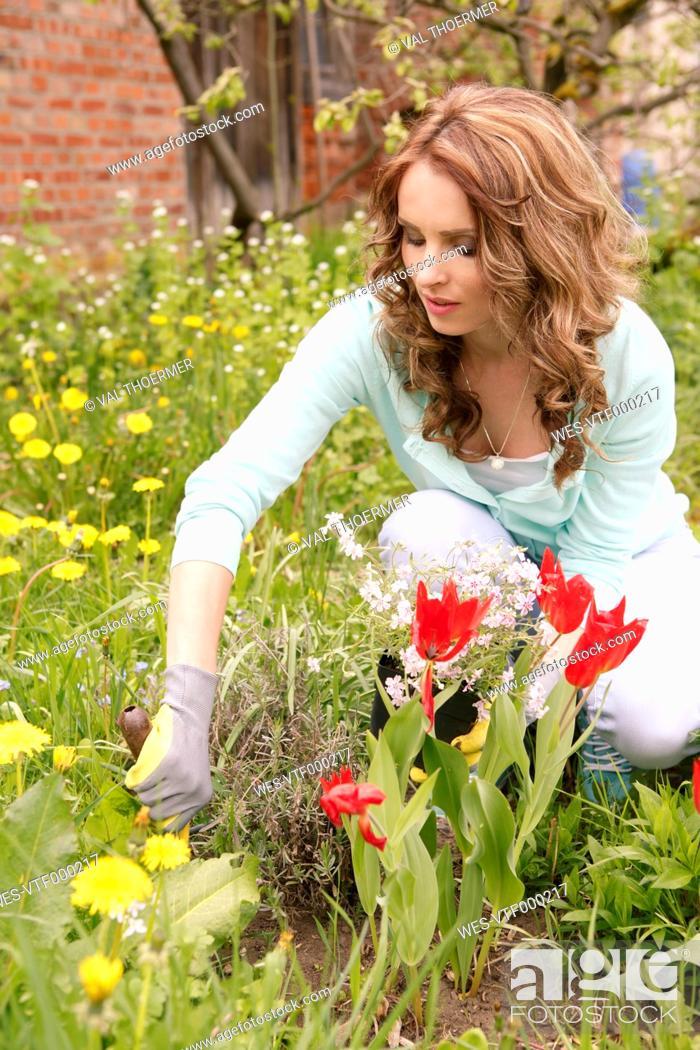 Imagen: Woman planting in the garden.