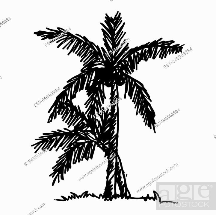 Stock Vector: doodle coconut tree icon hand draw illustration design.