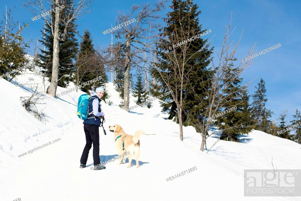 Imagen: Germany, Bavarian Forest, Lusen, smiling woman with dog hiking in winter.
