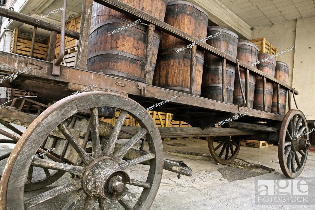 Stock Photo: gr5, Ribeauvillé wine heritage, Haut Rhin, Alsace, France.