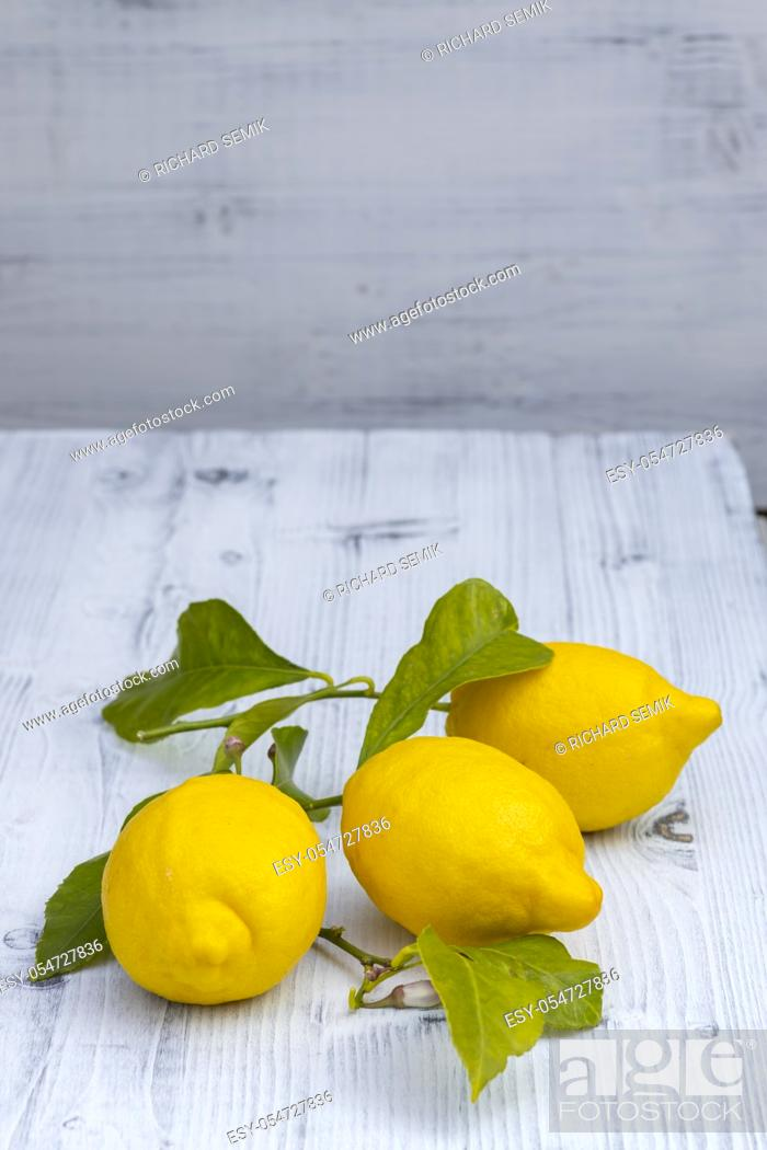 Stock Photo: still life with lemons with leaves from Sorrento.