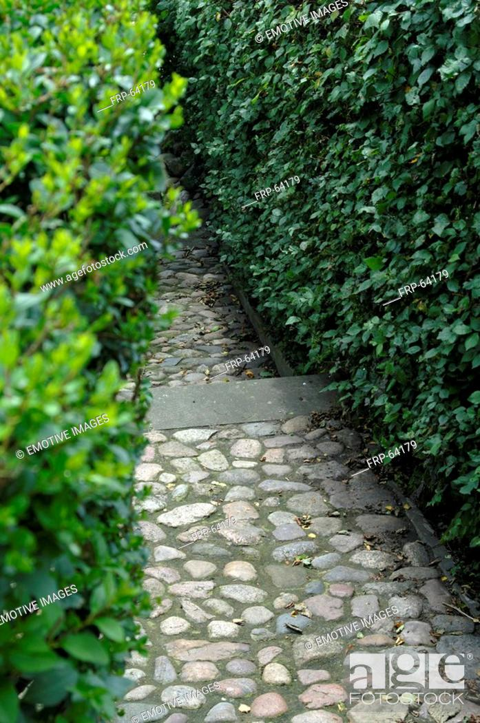 Stock Photo: Garden path with cobblestones.