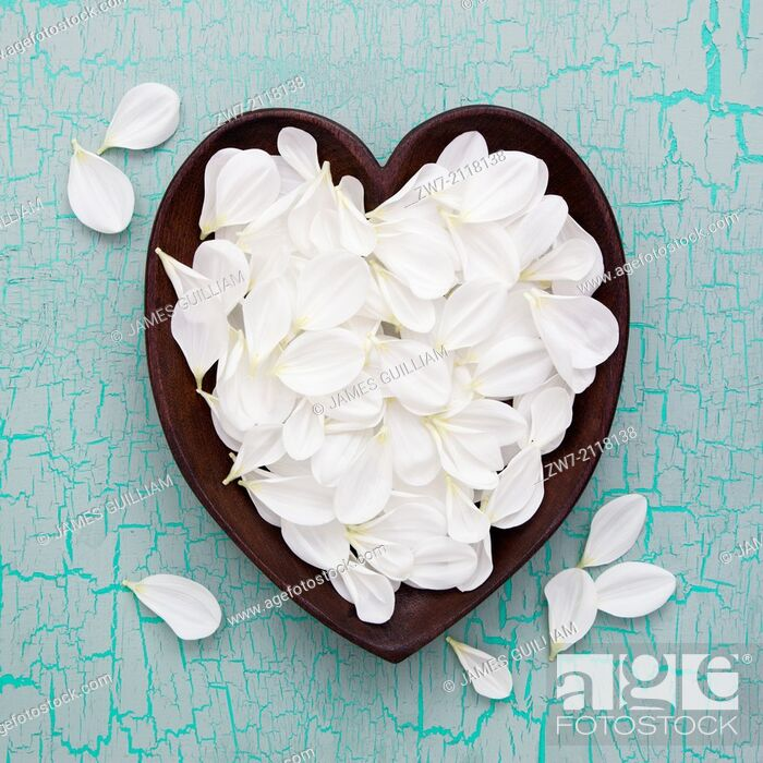 Stock Photo: White Dahlia petals in wooden heart.
