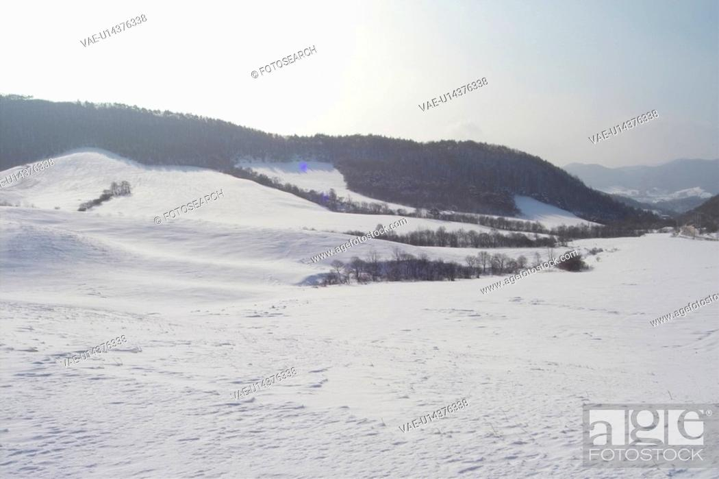 Stock Photo: landscape, snowy, background, snowfield, winter, tree, snow.