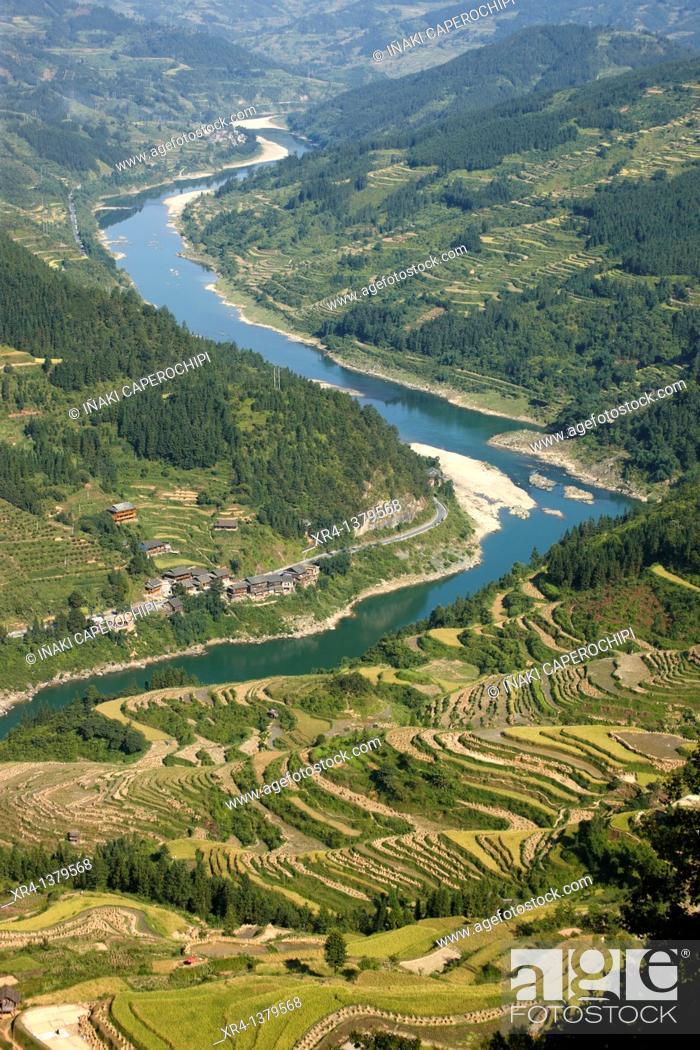Stock Photo: Terraces and rice paddies, Around Rongjiang, Rongjiang, Guizhou, China.