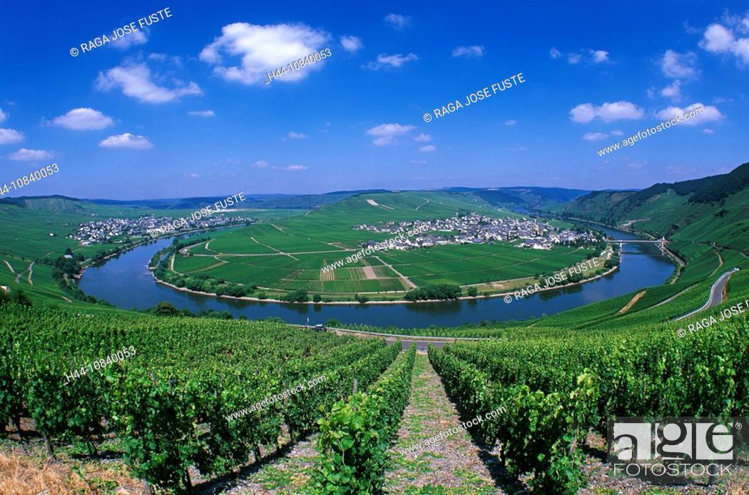 Stock Photo: Germany, Europe, Trittenheim, Moselle River, Mosel bend, Rhineland-Palatinate, village, July 2007, Europe, landscape,.