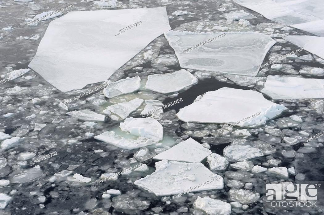 Stock Photo: Ice Floe  Weddell Sea, Antarctic Peninsula, Antarctica.