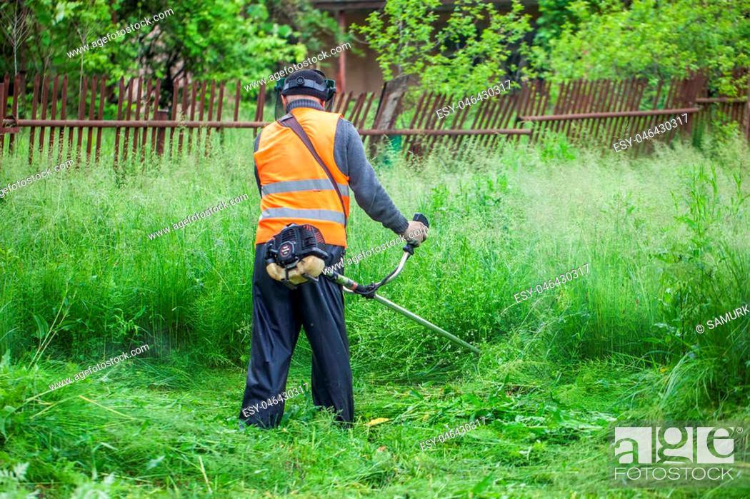 Imagen: The gardener cutting grass by lawn mower.