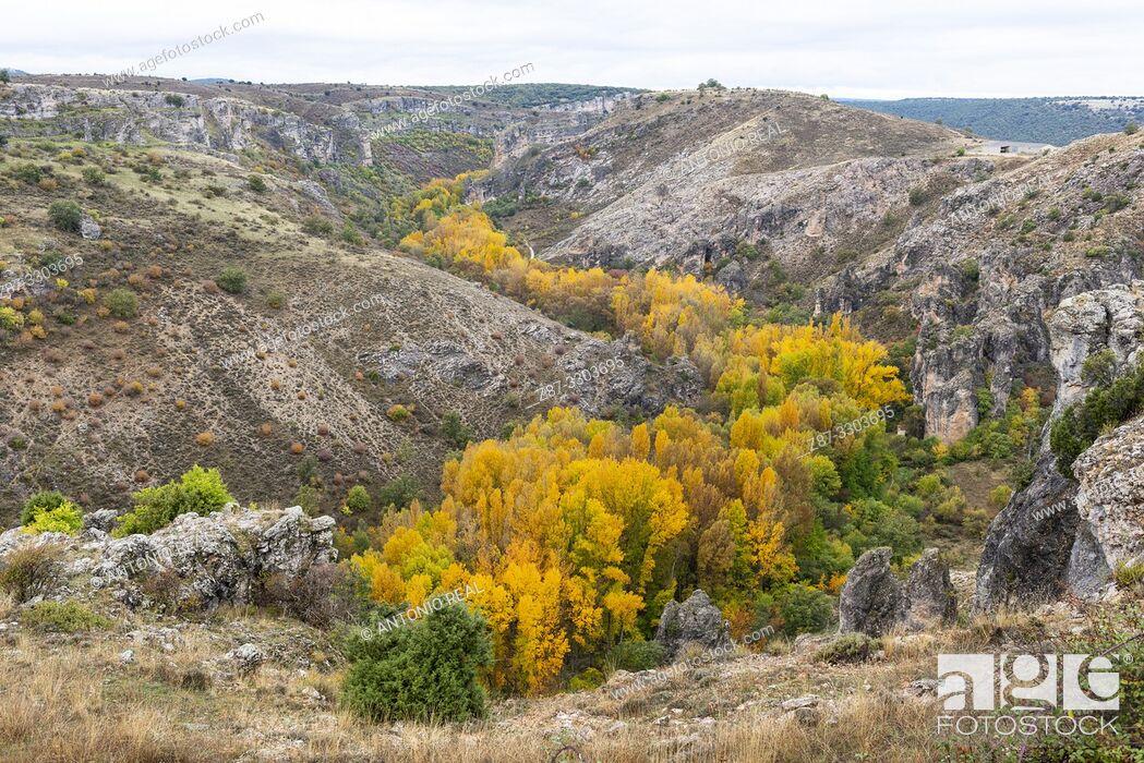 Stock Photo: Parque Natural Barranco del Río Dulce. Pelegrina. Guadalajara Province, Castile-La Mancha, Spain.