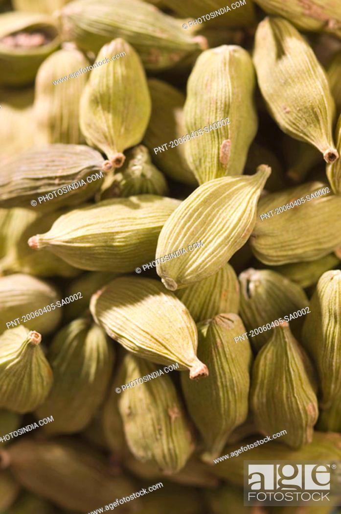 Stock Photo: Close-up of Cardamoms.