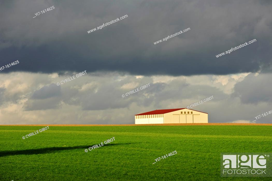 Stock Photo: Barn under stormy sky, Marne, Champagne Ardennes region, France.