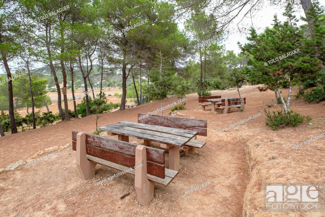 Stock Photo: area recreativa Sa Talaia, San Antonio de Portmany, Ibiza, Balearic Islands, Spain.