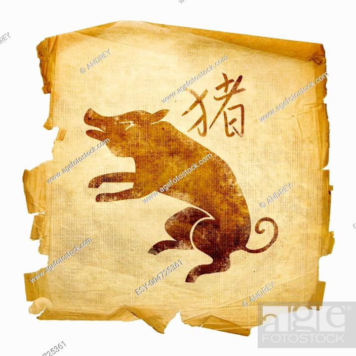 Stock Photo: Pig Zodiac icon, isolated on white background.