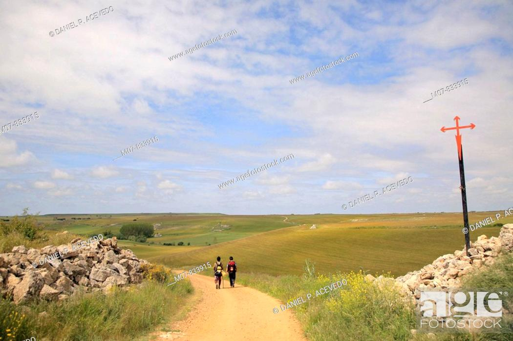 Stock Photo: Camino de Santiago, Burgos, Castilla, Castilla León, Spain.