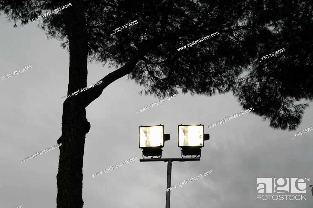 Stock Photo: two spot flood lights by tree at night.