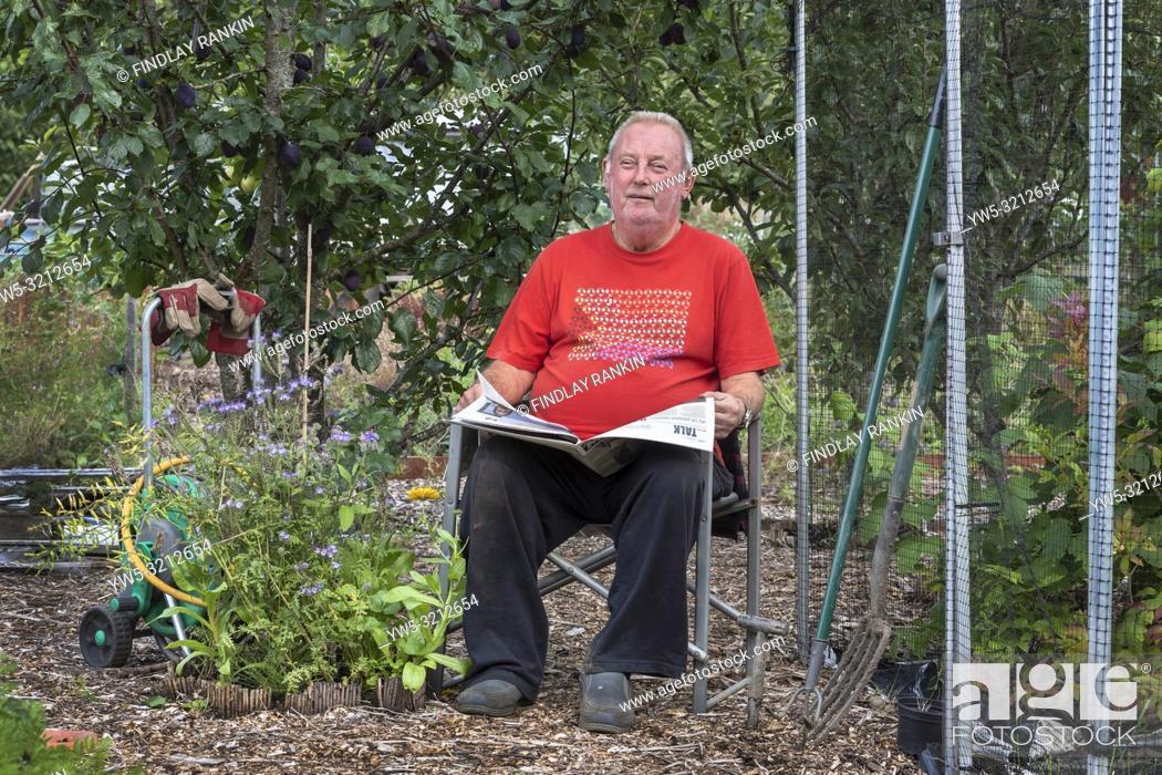 Stock Photo: Plot 8, Gus Bothwell reading his newspaper a Eglinton Growers allotments, Kilwinning, Ayrshire, Scotland.